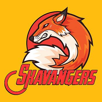 SkavAngers